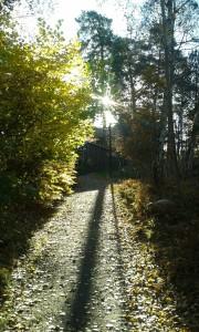 Photo: AnnVixen