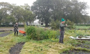 Crofters Julie and Donald are defying the rain and working the Croft in Leith Links Park! Photo: AnnVixen