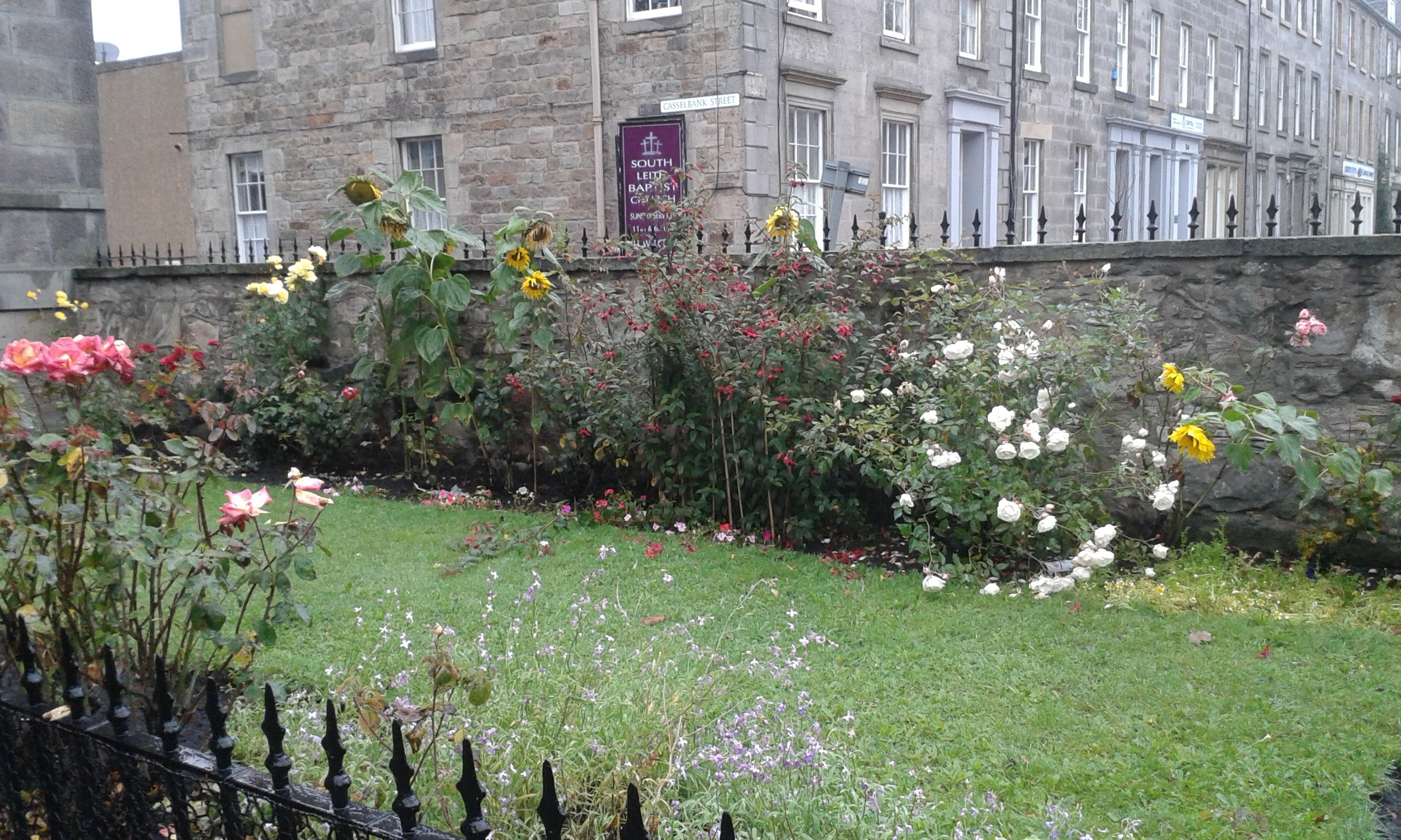 No011 Peas, Love and Bumblebees in the secret gardens of Edinburgh