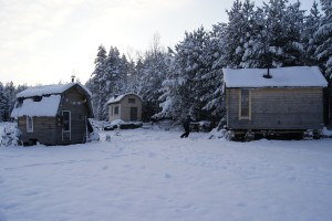 Three Tiny Homes on wheels by the woods at Flurludar farm. Photo: Agata Mazgaj