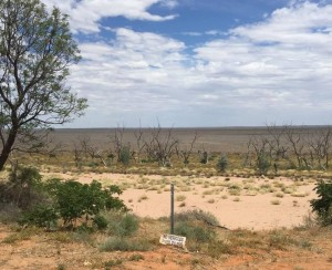 Lake Menindee in 2016, the grey-brown areas used to be the lake. Photo: Sandra Kanck