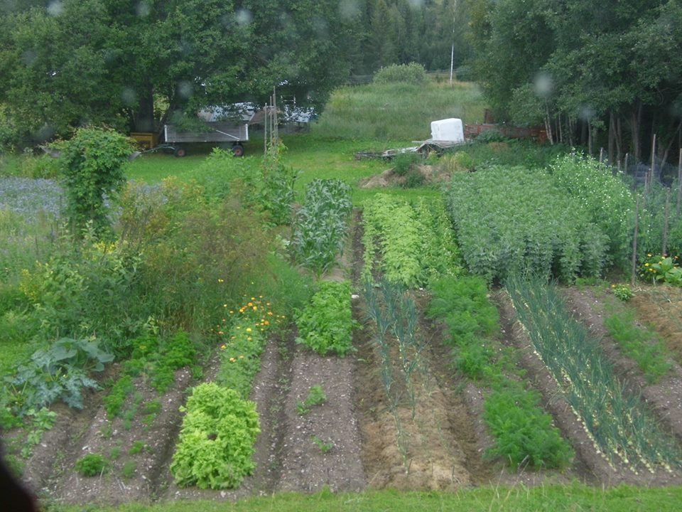 The healthy green self-containing garden! Photo: Zoe Elims Tellus Think Tank 2016