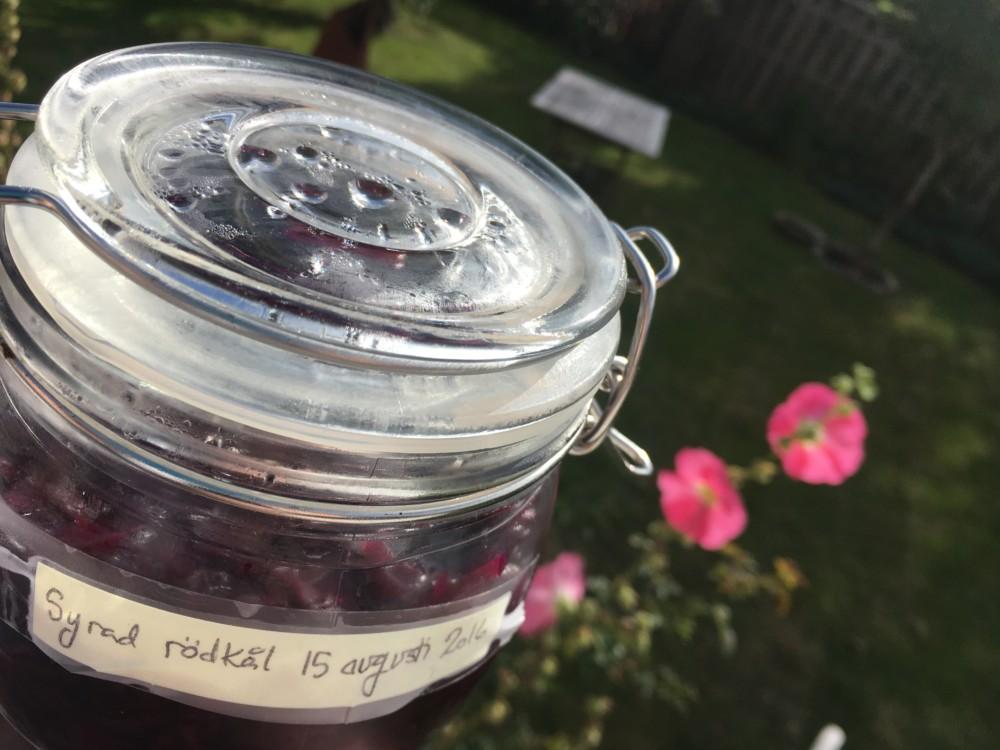 Fermentation recipes, a healthy way to preserve vegetables No030